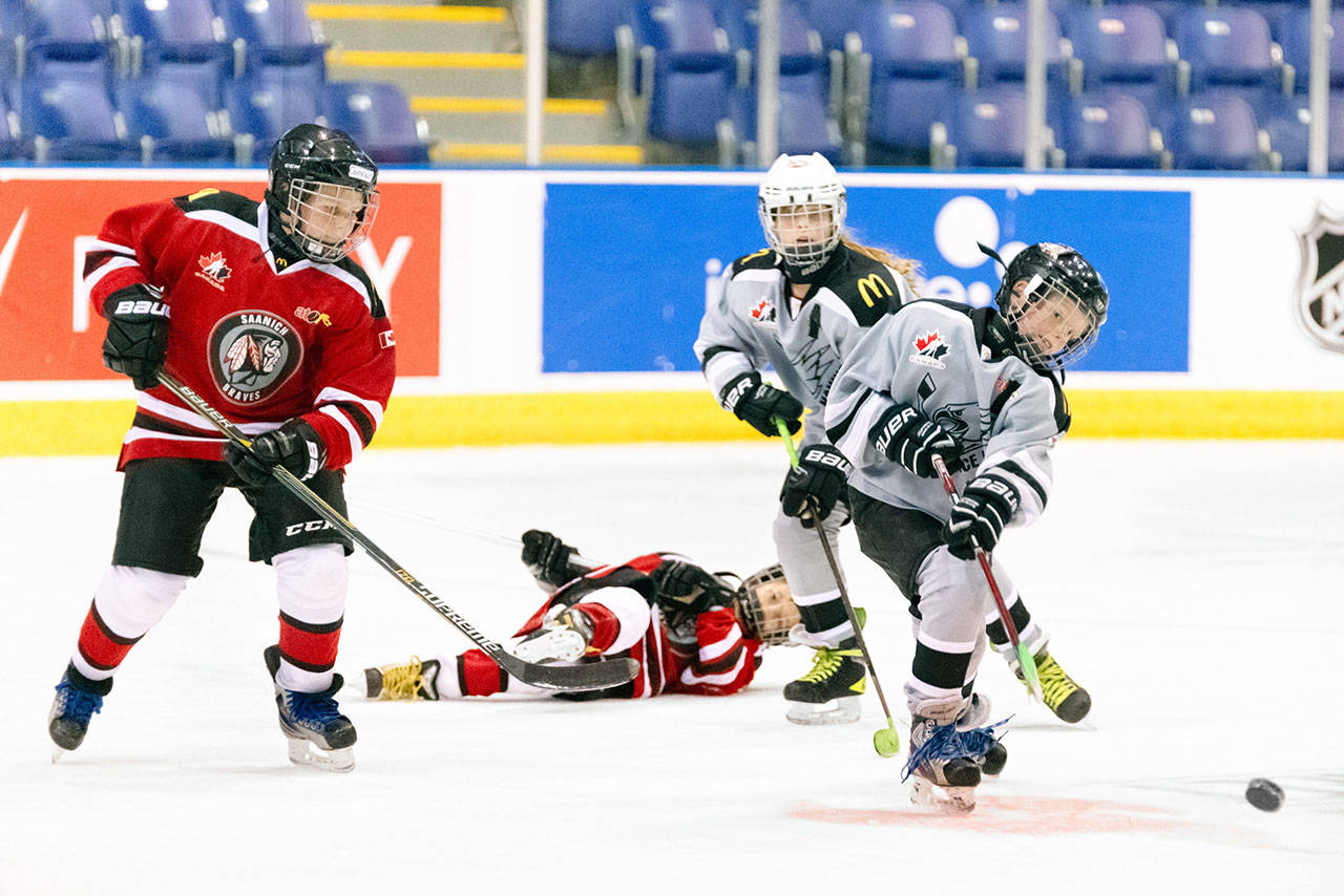 Victoria And Saanich Minor Hockey Leagues Amalgamate Sooke News Mirror